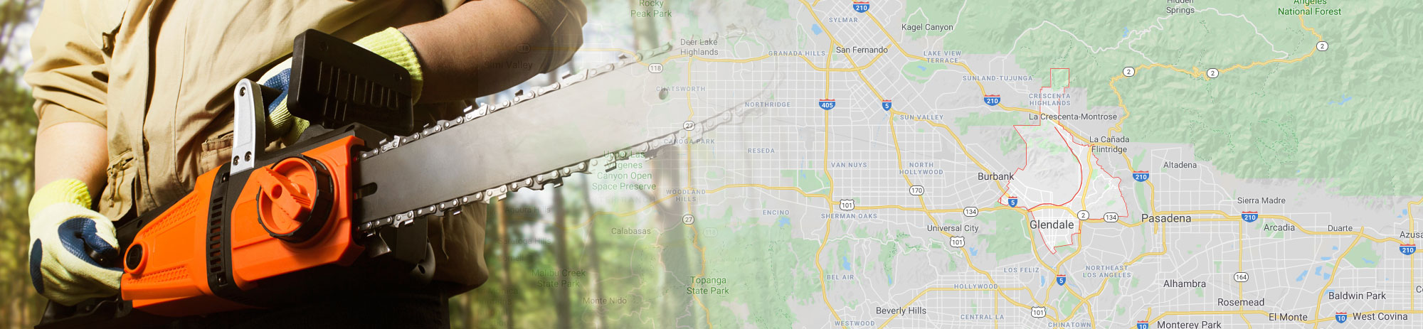 tree service Glendale, California